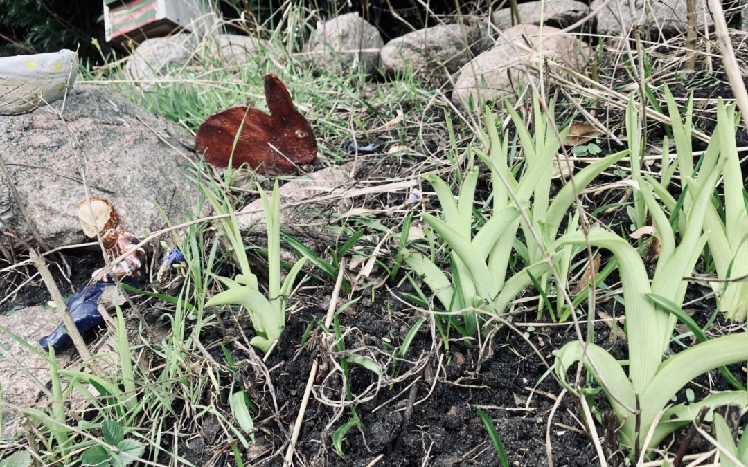 Frühlingswind – alles neu macht der April